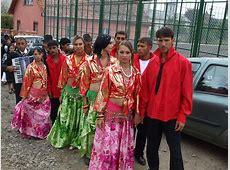 Can Romas be part of the Indian diaspora? NRI Pulse