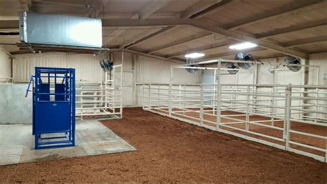 Steer Barn by Cattle Cattle Show Cattle Barn Cattle Barn Barn Plans
