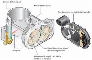 Acelerador Electr U00f3nico