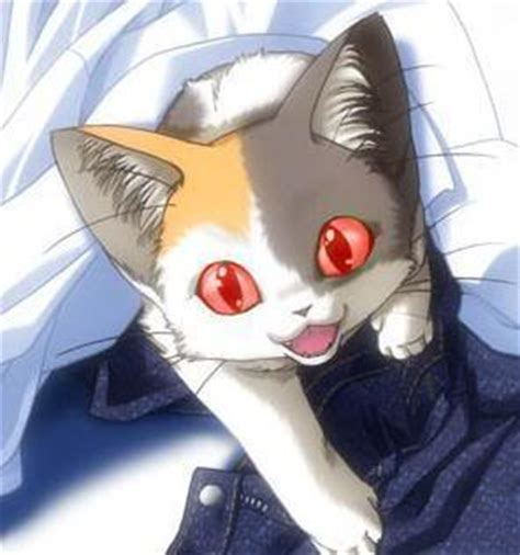 Anime Cat Coming Out Of Pants By Kickasskeara On Deviantart
