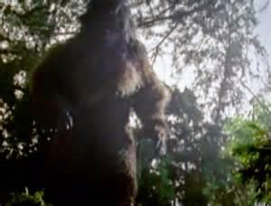 Sasquatch Bigfoot Sightings 2015