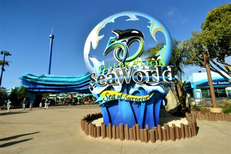 Seaworld San Diego Tips For Visiting Discounts