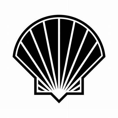 Seashell Vector Icon Vectors Clipart