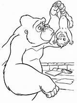 Coloring Pages Gorilla Animals sketch template