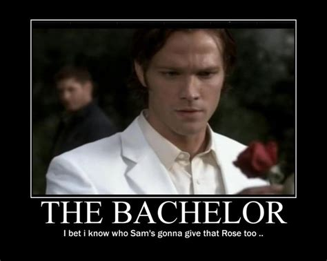 Bachelor Memes - 319 best images about supernatural on pinterest dean o gorman dean winchester and castiel