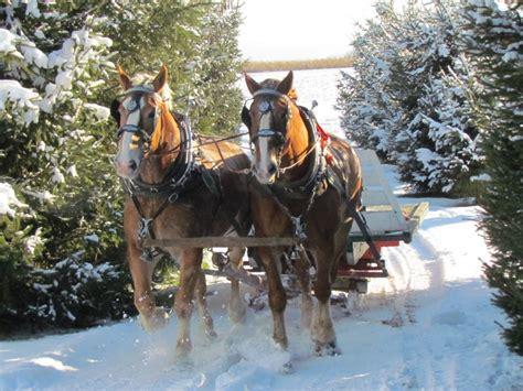 Colorado Blm Christmas Tree Permits by 28 Sleigh Ride Part 2 2 Sleigh Ride Trombone 2