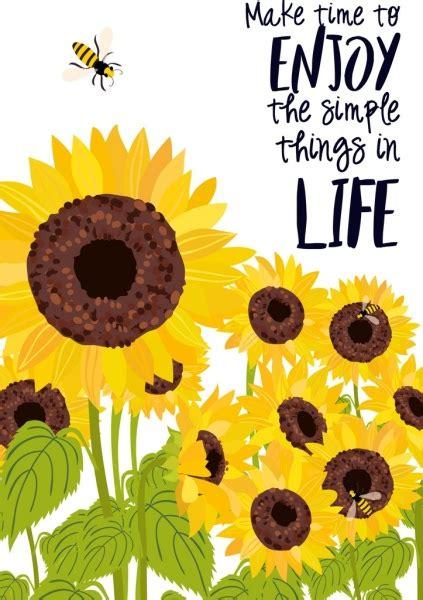 sunflower  vector    vector