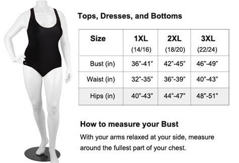 clothing size chart templates word excel formats