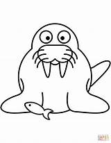 Walrus Coloring Cartoon Pages Drawing Dot Printable Getdrawings sketch template