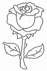 Margarita Glass Template sketch template