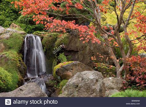 Japanischer Garten Golden Gate Park by Japanische Teegarten Im Golden Gate Park San Francisco