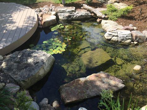 rocks and gravel substrate pond design garden pond specialists in the midlands uk pond