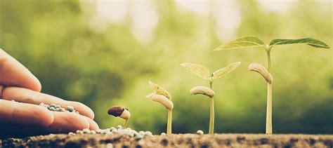 Garten Im Maerz Das Ist Jetzt Zu Tun by Gartenarbeit Im M 228 Rz Das Ist Jetzt Zu Tun