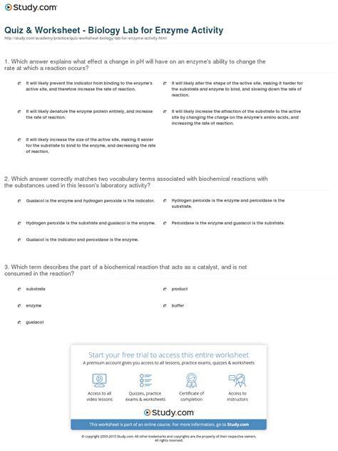 amoeba enzymes worksheet key free printables worksheet
