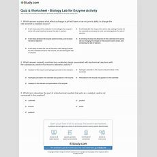 Quiz & Worksheet  Biology Lab For Enzyme Activity Studycom