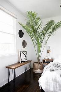 15, Fascinating, Bedrooms, With, Plants, That, Look, Like, A