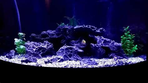 Aquascaping Cichlid Aquarium by Aquascape Cichlid Aquarium