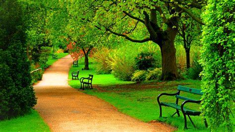 green park trees nature beautiful day hd wallpaper