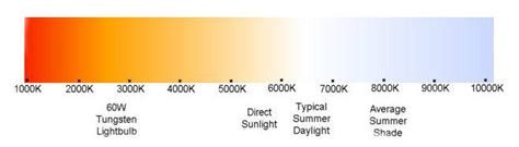 spectrum light bulbs best light spectrum for my plants t5 grow light fixtures