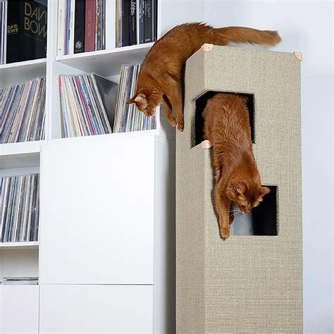 somali katzen kratzbaum dome bildergalerie stylecats