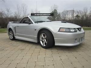 2002 Ford Mustang Gt Convertible 2 - Door 4. 6l W / Rousch Pkg
