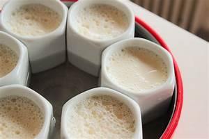 Yaourt De Soja : faire ses yaourts de soja maison recettes de th se ~ Melissatoandfro.com Idées de Décoration