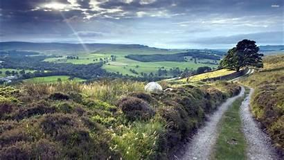 Hilltop 1440 2550 Nature Landscape Road Desktop