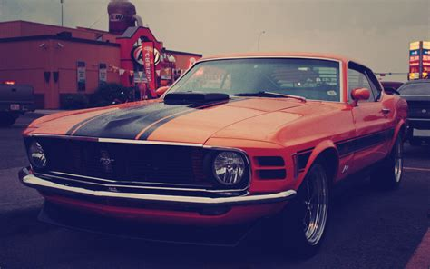 pictures   ford mustang wallpapers