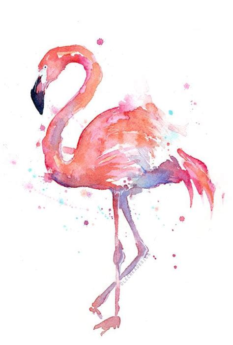 what color is a flamingo flamingo water color picture my color