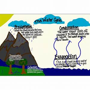 4th Grade Water Cycle Diagram Pictures to Pin on Pinterest ...