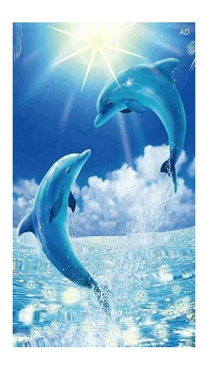 Dolphin Dolphins Dauphin Mobile Delfini Delfin Delfine
