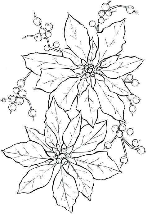 poinsettia  art christmas  graphics fairy