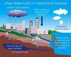 Understanding Stormwater