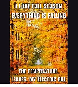 I LOVE FALL SEASON EVERYTHING IS FALLING THE TEMPERATURE ...