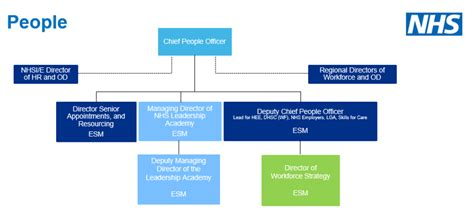 full details  nhs england  improvement structure