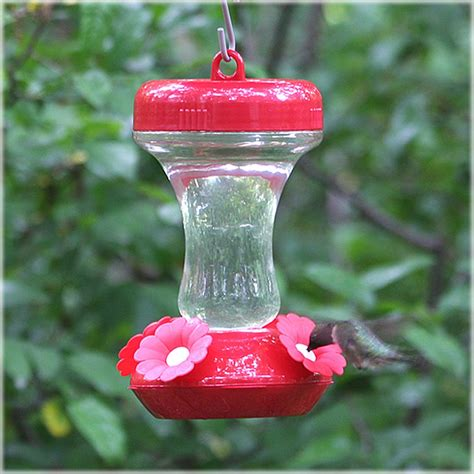 best hummingbird feeder pet top fill glass hummingbird feeder 8 oz 130tf