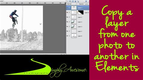 Photoshop Elements Quick Tip  Quickly Copy A Layer To