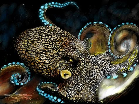 what color is an octopus octopus color by acostamt on deviantart