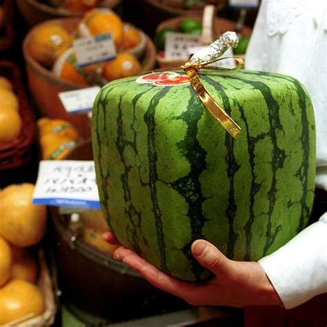 Odd shaped fruit is the latest Japanese craze   Red Online