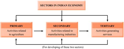 sectors  indian economy primary secondary tertiary