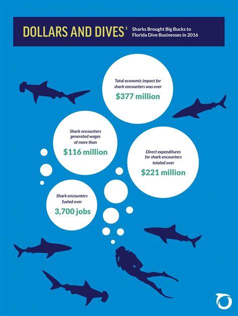 florida shark sharks diving oceana impact tourism economic infographic usa according study wlrn dollars dives