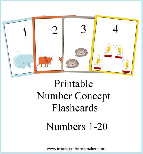 Printable Number Concept Flashcards  Printable Numbers, Teaching Numbers And Math