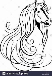 Pferdekopf Schwarz Weiß : mammal tattoo stockfotos mammal tattoo bilder alamy ~ Watch28wear.com Haus und Dekorationen
