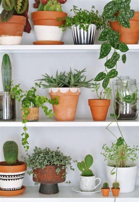 terracotta pot inspiration diy painted pots indoor