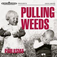 pulling weeds album van paulusma muzikale ontdekkingen