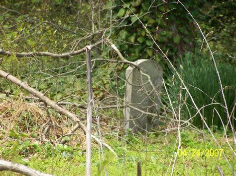 Pets Buried In Your Backyard / Mylot