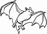Bat Coloring Pages sketch template