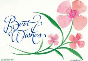steno best wishes for those taking the csr