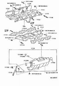Toyota Cressida Engine Intake Manifold Gasket  Exhaust