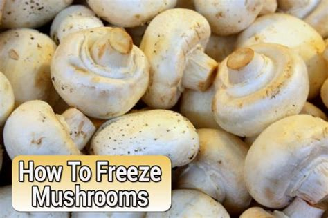 can you freeze fresh mushrooms how to freeze mushrooms